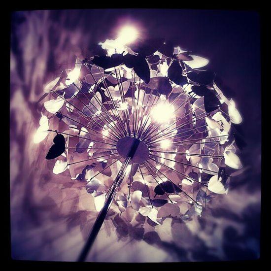 Lampes Lamp