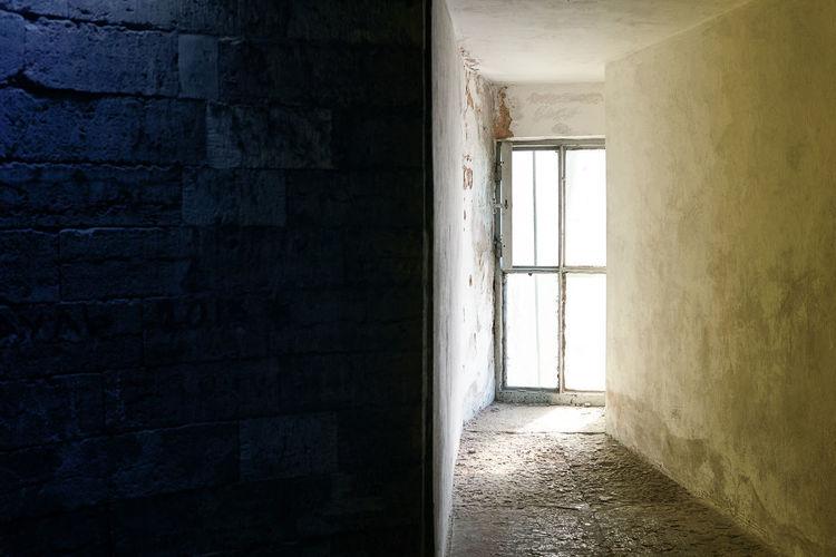 Window in the