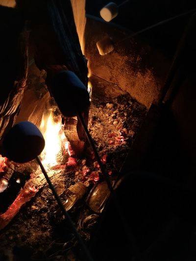 Overnight Success Camping Camp Fire Quiet Marshmallows