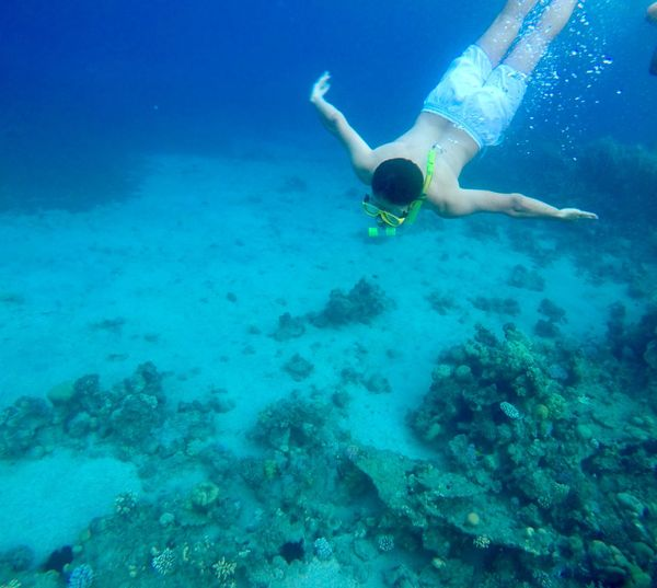 High angle view of man swimming undersea