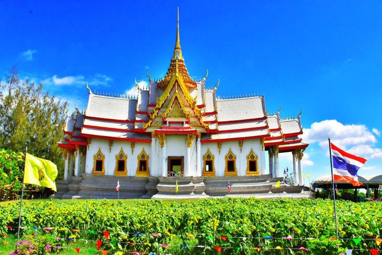 วัดสวยๆ Architecture Flower Religion Sky Gold History No People Travel Destinations Gold Colored Outdoors King - Royal Person Grass Royalty Day Nature อุโบสถ วิหารหลวงพ่อโต เจดีย์ สดใสวันอาทิตย์😊