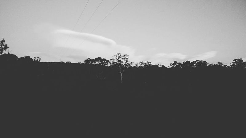 Beauty In Nature Bush Canberra Canberra City Cloud Cloud - Sky Cloudy Country Day Gumtrees Landscape Light And Shadow Nature No People Non-urban Scene Outdoors Rural Scene Scenics Sky Sunset #sun #clouds #skylovers #sky #nature #beautifulinnature #naturalbeauty #photography #landscape Sunset_collection Tranquil Scene Tranquility Tree Weather