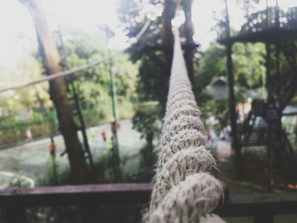 Nature Outdoors Focus Rope Balancing Act