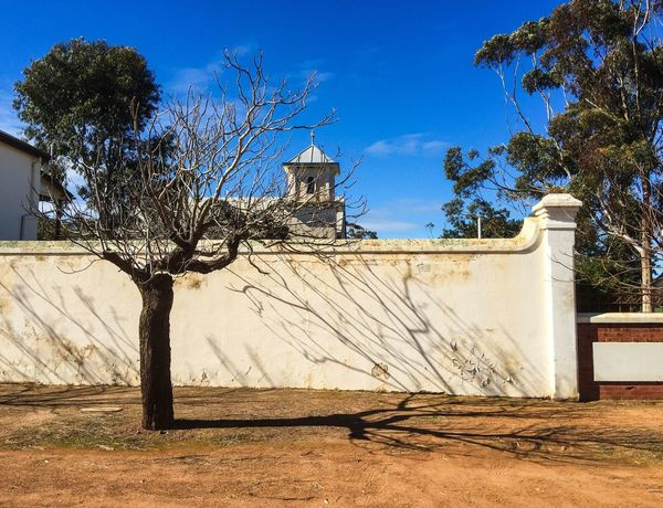 Shadow Lines Architecture Building Exterior Monastic Town New Norcia Western Australia Australia White Boundary Wall Tree Shadow Lines Sky Outdoors Monastery Benedictine Tree Shadow Branches Leafless