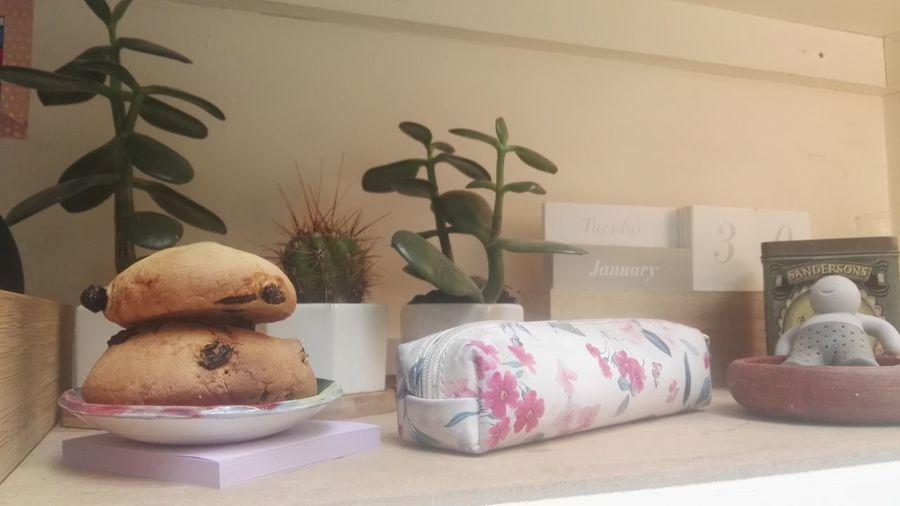 Desk Desk Decoration Teacherslife Cookies Cactus Cactus On Desk