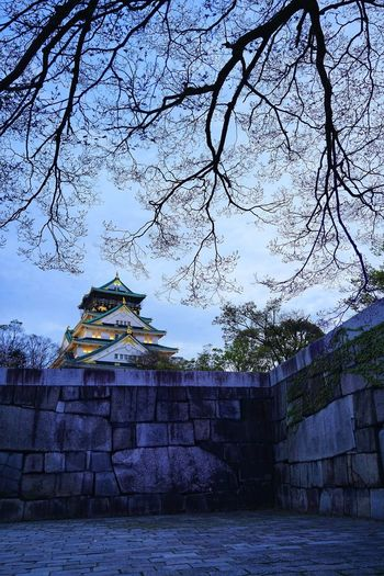 Osaka Castle Osaka,Japan Nightphotography No People No Person Tree Pixelated Sky Architecture Building Exterior Built Structure Historic Civilization Palace Visiting Castle Ancient Civilization Ancient History Past Building Pavilion