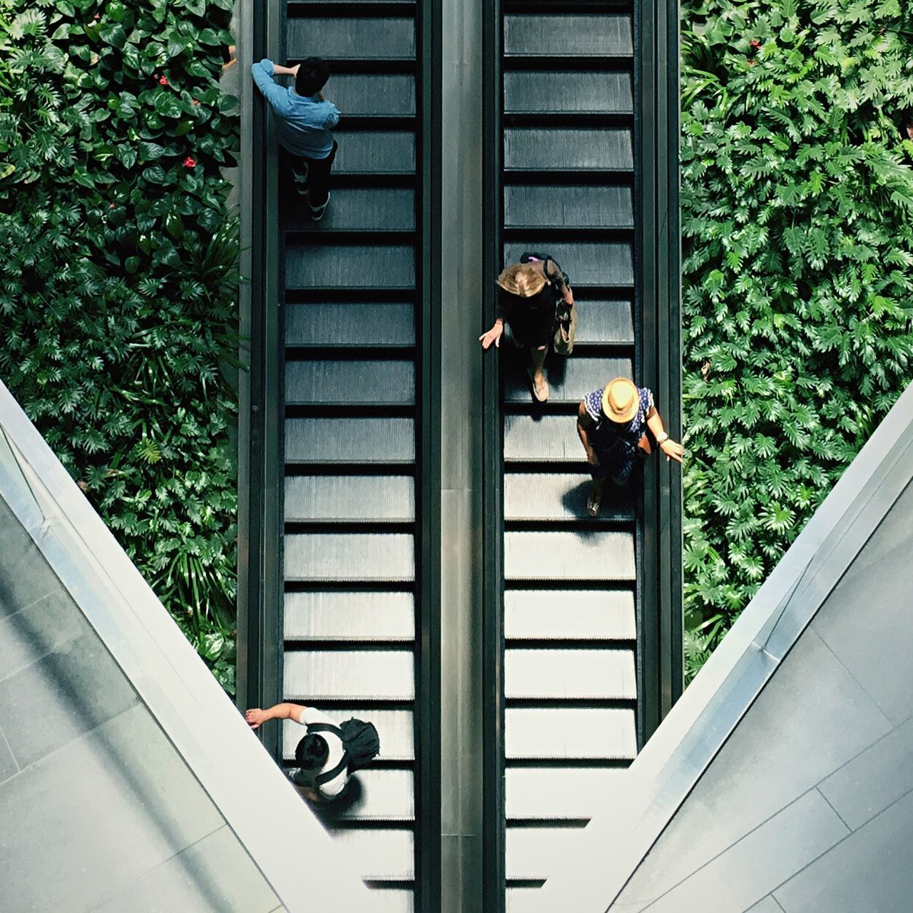 High angle view of people on escalator amidst plants