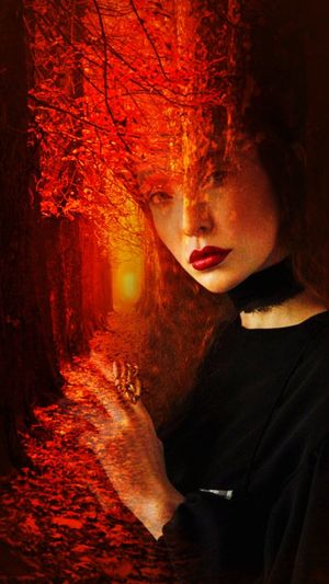 Montage Photography Perso Portrait Beautiful Woman Much Colors