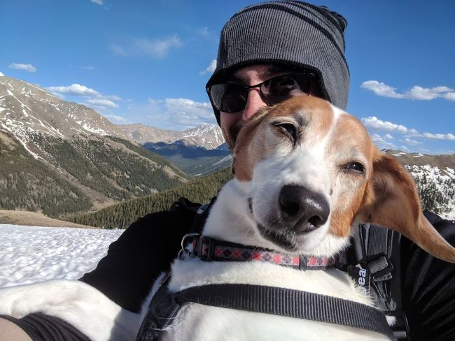 Selfie Pet Mixed-breed Dog Beagle Jackrussellterrier Jackabee Beauty In Nature Pet Behavior Vacation Hiking Scenics EyeEm Selects Warm Clothing Portrait Pets Mountain Men Snow Cold Temperature Looking At Camera Dog Snowcapped Mountain Idyllic Rocky Mountains Mountain Range