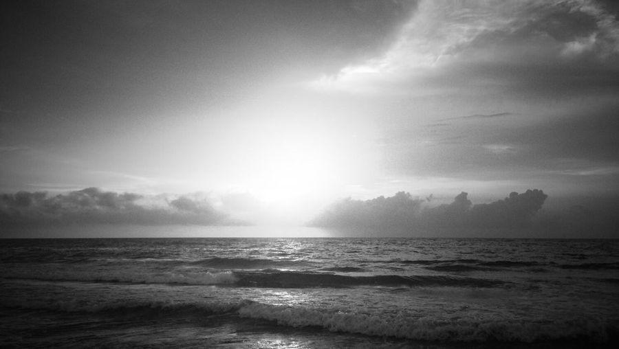 Beach Nature Blackandwhite Black And White