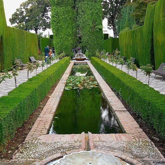 Travel Destinations Spain🇪🇸 World Heritage Sightseeing Sight Touristy Tourist Attraction  Worth Visiting Garden Architecture Fountain Garden Art Alhambra Palace Granada Outdoor Travel Tourist Attraction