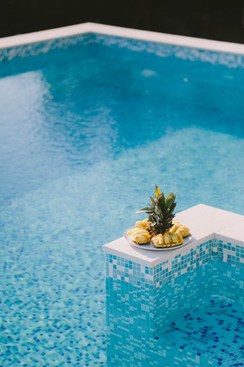High angle view of fruits by swimming pool