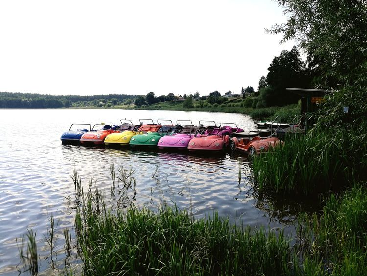 Water Nautical Vessel Tree Lake Pedal Boat Reflection Multi Colored Sky Grass