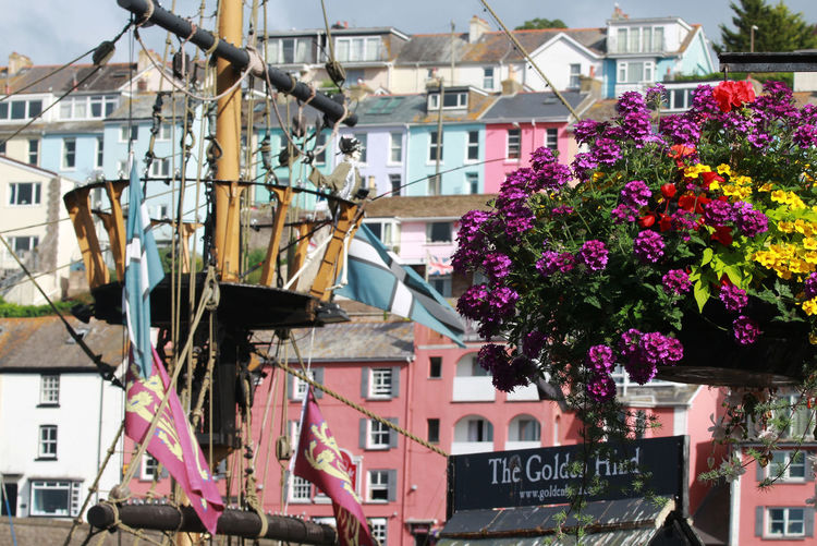 Architecture Brixham  Brixhamharbour Building Exterior Built Structure Colors Colours Day Flower Flowers Francis Drake Galleon Golden Hind Harbour No People Outdoors Pastel Colors Pink Pink Color Quarterdeck Residential Building Residential Structure Town Wood