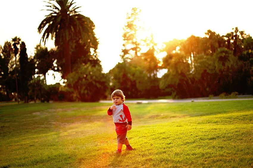Enigmatico Sunset Michele Parco EyeEmNewHere Full Length Child One Person Childhood Grass Tree Bambino Tramonto Sunset