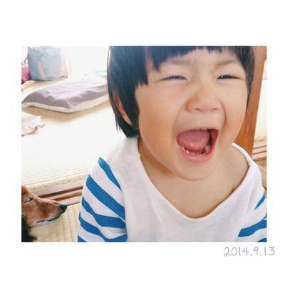 母のスマホで自分撮りを散々したむすこ。 うん、いい笑顔だ◎ * 左下にちゃっかりと写るレオ。笑 この二人もなかなか仲良しです……♥ * 今日は久々に夜更かししたー。 さて寝ましょ✩ おやすみなさい( *ˆoˆ* ) 1歳 1歳11ヶ月 23ヶ月 男の子 子供息子ig_beautiful_kidsig_kidsloves_kids lovekids_ ig_oyabakabuboys 親バカ親ばか部犬いぬわんこ dogsミニチュアダックスフンドダックスおやすみなさい