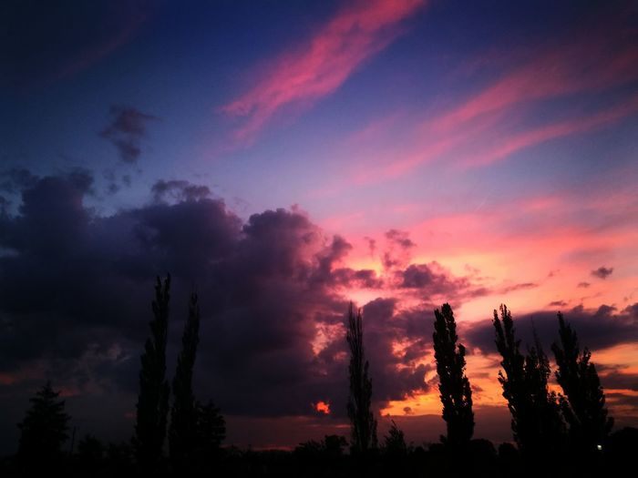 Sky Cloud - Sky Silhouette Sunset Scenics - Nature Beauty In Nature Plant Tree Tranquil Scene No People Tranquility Nature Non-urban Scene Environment Orange Color Dramatic Sky Outdoors Growth Dusk Land Pollution Coniferous Tree Romantic Sky