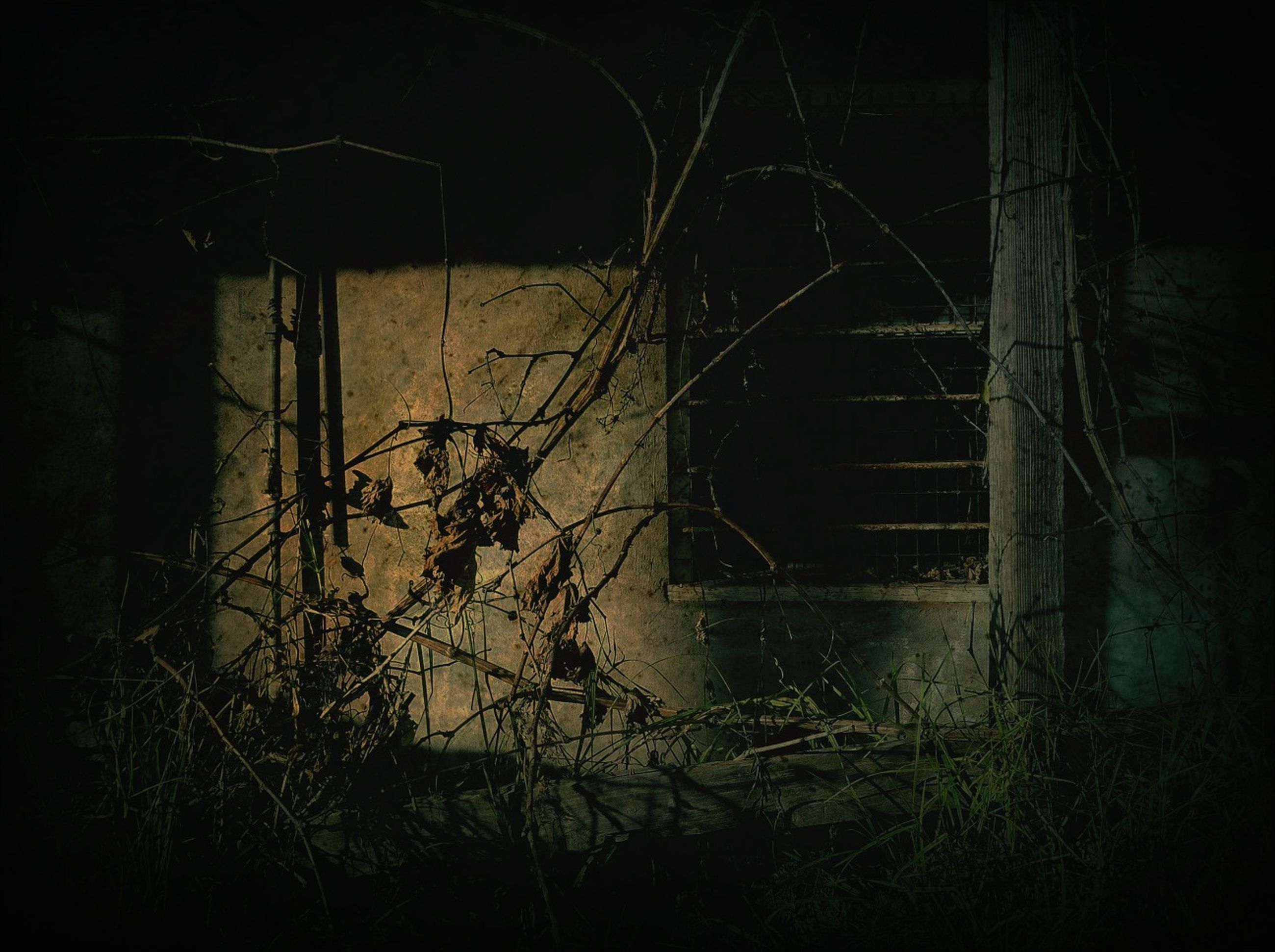 night, abandoned, dark, built structure, damaged, obsolete, old, illuminated, architecture, no people, tree, outdoors, branch, metal, bare tree, house, plant, run-down, grass, deterioration
