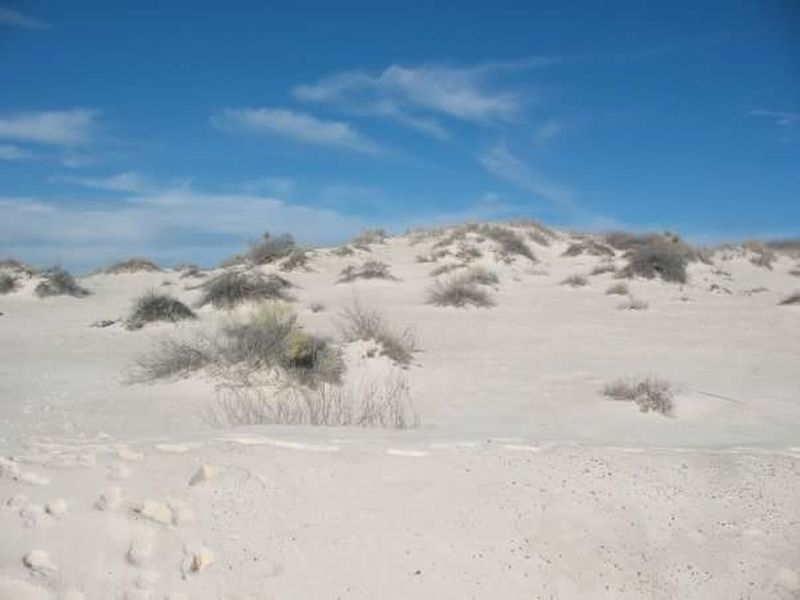 Sand Sand Dune Desert Sky Blue Nature Landscape Outdoors Marram Grass Beach No People Arid Climate Day Sands Las Cruces Sky Tranquil Scene New Mexico Las Cruces Natural Monument Tranquility Beauty In Nature Peace And Quiet Wilderness Area Remote Scenics