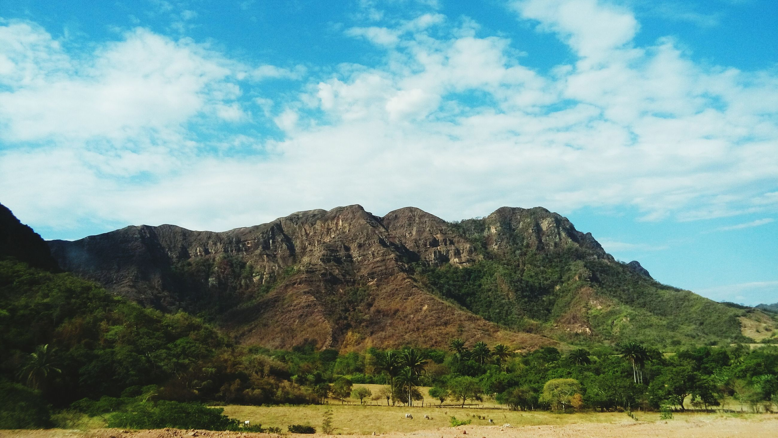 mountain, sky, tranquil scene, tranquility, scenics, mountain range, landscape, beauty in nature, cloud - sky, nature, cloud, non-urban scene, tree, blue, idyllic, remote, day, hill, outdoors, cloudy