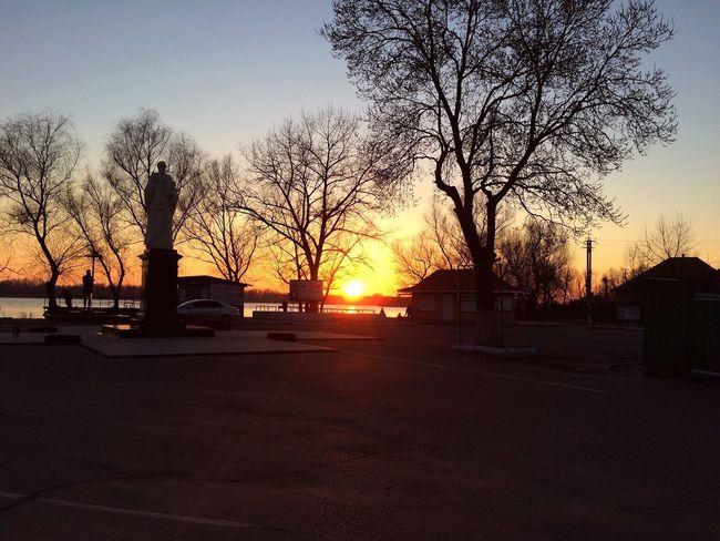 Danube Landscape Sunset Nature Tree Vilkovo