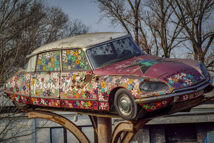Citroën DS Abandoned Car Car Wreck Day No People Outdoors Relic Transportation Tree