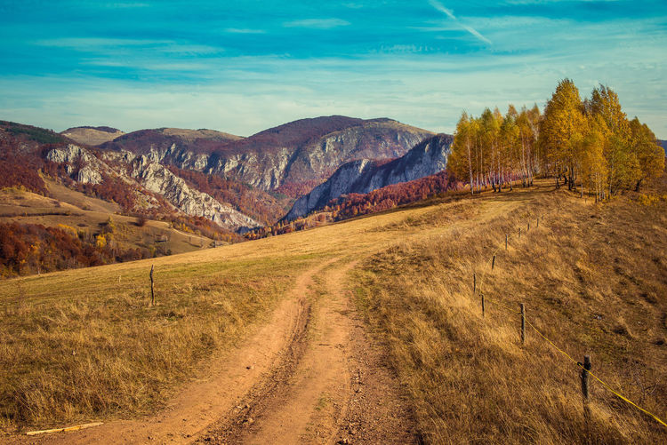 Rural autumn landscape with a dirt road in the mountains Autumn Road Beauty In Nature Birch Tree Cliff Countryside Day Dirt Road Fall Filtered Image Forest Grass Landscape Limestone Mountain Mountains Nature No People Outdoors Scenics Sky Toned Tranquil Scene Tranquility Tree