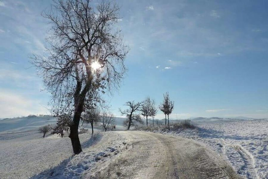 The Purist (no Edit, No Filter) First Snow Oltrepopavese Nature_collection Landscape_Collection Landscape Popular Photos Eye Em Nature Lover Italy How's The Weather Today?