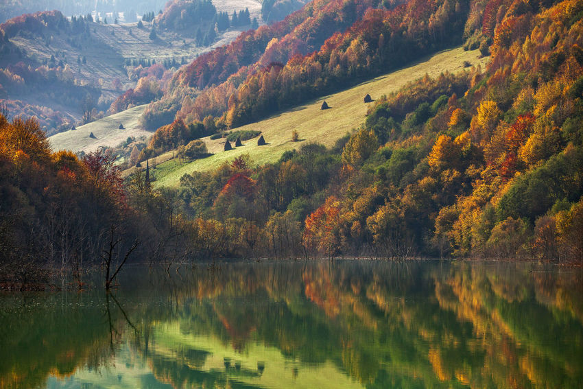 Rosia Montana Lake in autumn season. Autumn Colors Green Light Nature Reflection Rural Beauty In Nature Change Colorful Fall Forest Hillside Lake Landscape Mountain Mountain Range Outdoors Scenics Season  Tranquility Tree Water