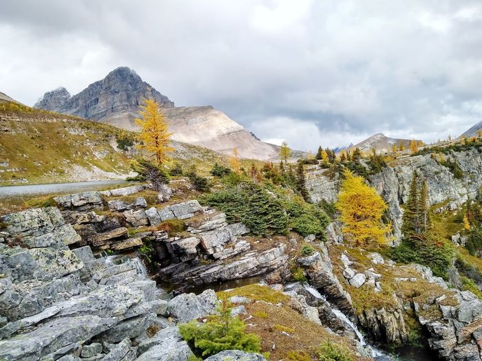 Autumn colors in the backcountry, waterfall, redoubt lake falls, skoki lodge  trails