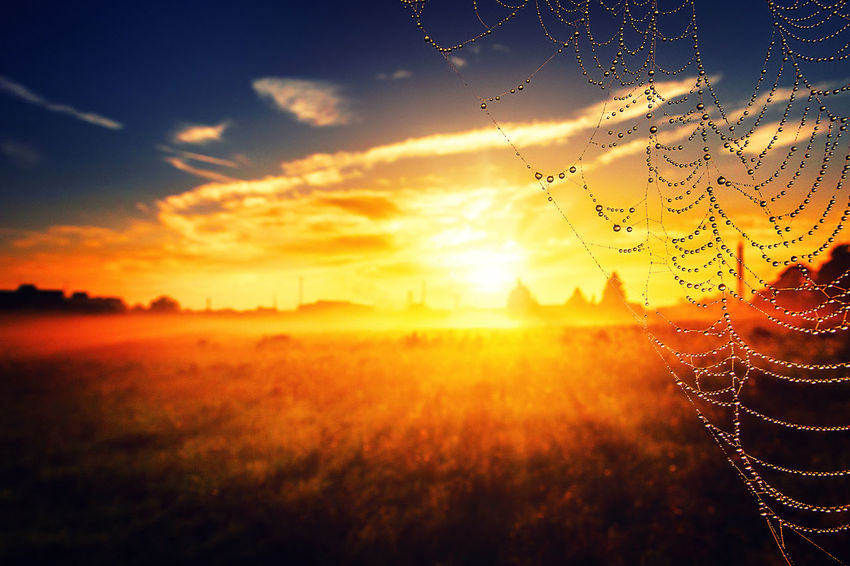 Marcin Adrian, Marcin_Adrian, www.marcinadrian.de, 50389 Wesseling, werbekurier, Stadt Wesseling, Köln, Bonn, Germany, Canon, Ricoh, THETA, S, #Marcin #Adrian #Marcin_Adrian #www.marcinadrian.de #50389 #Wesseling #werbekurier #Stadt_Wesseling #Köln #Bonn #Germany #Canon #Ricoh #THETA #S #autumn #nature #autumnleaves #fashion #autumnweather #autumncolors #fall #autumn2015 #autumnsky #autumnsun #autumndays #australia #autumnday #autumnnail #autumnhair #leaves #autumnlook #autumn2014 #photography #autumntime #autumn2016 #autumnleaf #autumnwalk #autumn2013 #photooftheday #leaf #nails #autumntrip #travel #nail #herbst #autumn #m #nature #herbsttag #herbstliebe #herbstlich #herbstmesse #herbstwald #basel #herbstlook #herbstlaub #herbstzeit #herbstdeko #herbstfest #herbstmode #herbstsonne #herbst2016 #herbstbaby #love #herbstm #herbst2015 #herbst2014 #germany #k #deutschland #herbsttage #wiosna #wio #spring #wio100warriors #wi #zapachwiosny #wiosnawmiescie #polishgirl #wiolastrikk #wreszciewiosna #sunrise #nature #sunriseavenue #sun #sunriselovers #sunrises #sky #sunrise_sunsets_aroundworld #beautiful #sunriseporn #sunset #sky #sunsets #sunsetlovers #sunset_pics #sunsetporn #sunset_hub #sun #nature #clouds #landscape #nature #landscape_lovers #landscapephotography #naturelovers #landscapelovers #landscapes #naturephotography #landscape_captures #sky #landscapelover #landscapehunter #landscape_lover #mountains #tree #view #instagood #naturelove #amazing #travel #landscape #landschaft #nature #landscapephotography #landschaftsfotografie #natur #duisburg #landschaftspark #photography #germany #landschaftsparkduisburg #naturephotography #landschaftsfoto #landschaftsbild #picoftheday #gartenundlandschaftsbau #landschaftfotografie #garten #instagood #landschaftsg #canon #photography #canonphotography #photo #photographer #photooftheday #fotografia #canon6d #canoneos #instagram #canon_photos #canon7d #c #instagood #canon70d #nature #canonusa #canon60d #canont3i #photoshoot #wesse