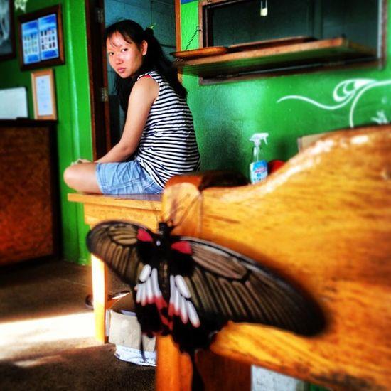 Butterflies & Tsor @ Ananda People Portrait Nature