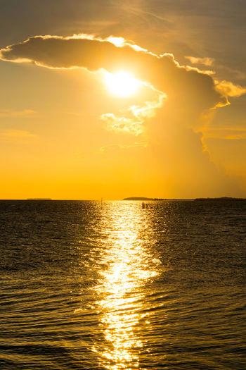 Reflection Summer Sun Sunbeam Sunlight Sunshine Sunset Golden Hour Golden Backgrounds Copy Space Nature Natural Pattern Freshness Water Sailing Sea Sunset Horizon Gold Colored Sunlight Summer Yellow Seascape Atmospheric Mood Dramatic Sky Cumulus Shining Moody Sky Romantic Sky