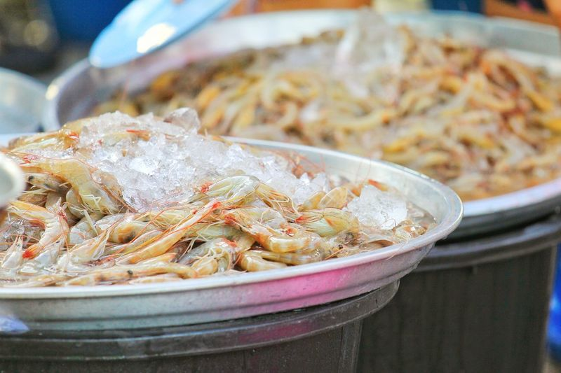 Buy fresh shrimp at the market Cold Fresh Market Market Tray Ice Fresh Shrimps Plate Seafood Business Finance And Industry Close-up Food And Drink Salted Cooked Fish Market Shrimp Prawn