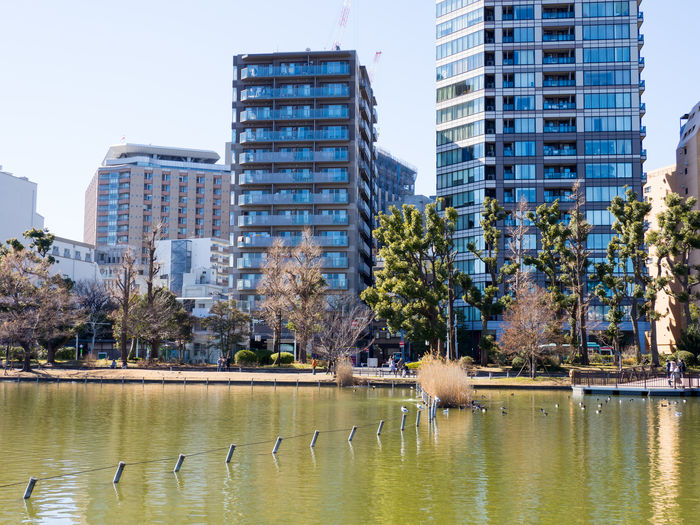 View of buildings by lake