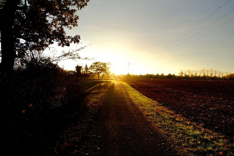 Onmywayhome Sunset Landscape The Way Forward Environment Field Sun Scenics - Nature Sunlight Dirt Diminishing Perspective Outdoors Tranquility