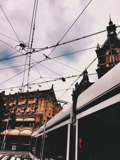 Webbin'. P258 Onephotoaday IPhoneography 365project2016 Netherlands Amsterdam Leidseplein Hotel American Stadschouwburg Tram Tramlines Powerlines Spider Edit Junkie Passing By Outdoors Cloudy Clouds