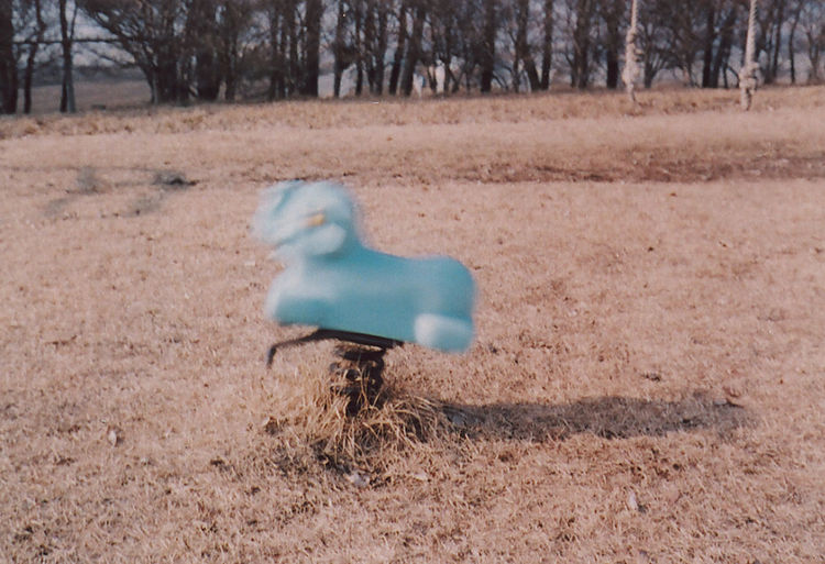 Toy on field in park during winter