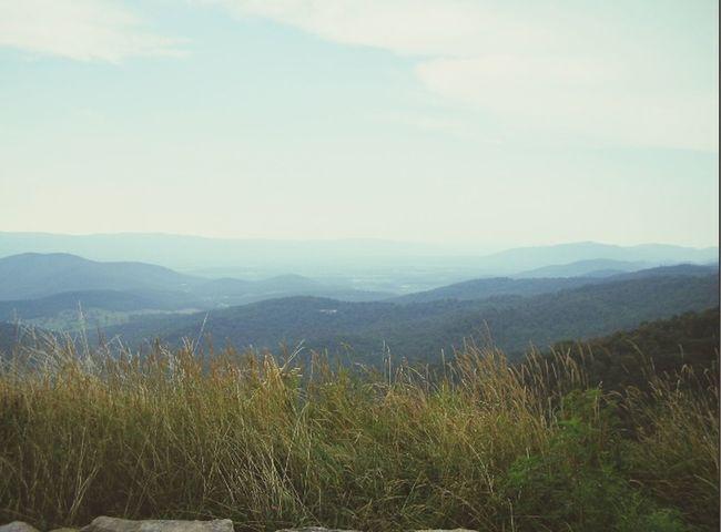 Landscape Shenandoah Nationalpark United States