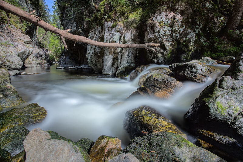 Tranquility Beauty In Nature Day Falling Water Flowing Water Forest Land Long Exposure Motion Nature No People Outdoors Power In Nature Rock Rock - Object Scenics - Nature Stream - Flowing Water Tranquil Scene Tree Water Waterfall Waterfalls
