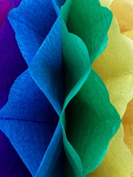 Colorful paper Papercraft Green Papel Paper Decoration Handmade Artificial Flowers Yellow Blue Close-up Beauty In Nature Leaf No People Blue Vulnerability  Full Frame Fragility Inflorescence