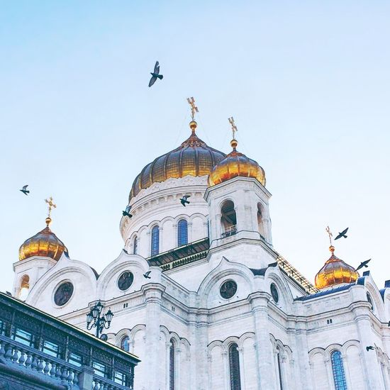 Low angle view of birds flying over cathedral of christ the saviour against sky