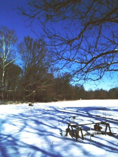 Tree Shadows Tree Silhouette Snowy Field Farm Equipment Snow Winter Weather Nature Tranquility Landscape