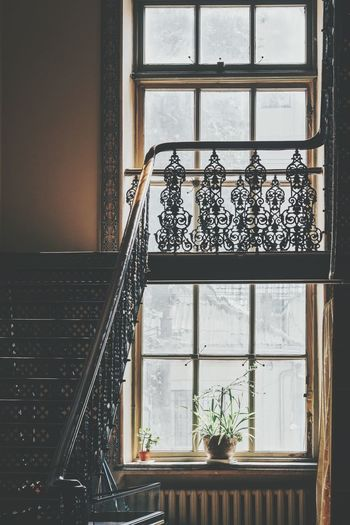 Staircase and window of house