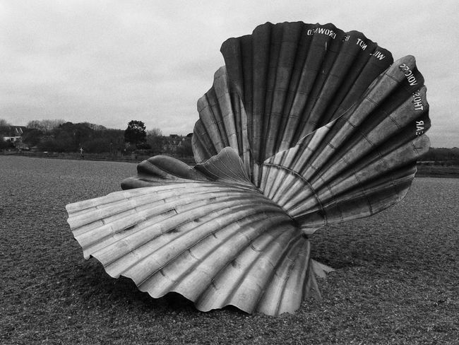 Eyem Best Shots Benjamin Britten Giant Shell BIG Giant Beach Uk Coast Aldeburgh Aldeburgh Suffolk Aldeburgh Scallop Black And White Scallop Shell Sculpture Art Art Is Everywhere Stoney Beach Fanned Out Outdoors Day No People EyeEmNewHere