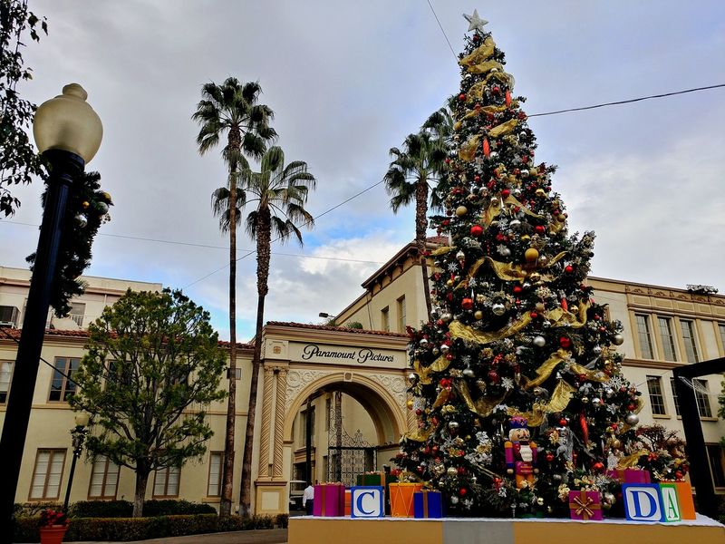 Palm Tree Travel Destinations City Tree No People Outdoors Cityscape Architecture Day Paramount  Paramount Studio Paramountstudios Christmas Tree Christmas Lights Christmastime Christmas Decoration EyeEmNewHere