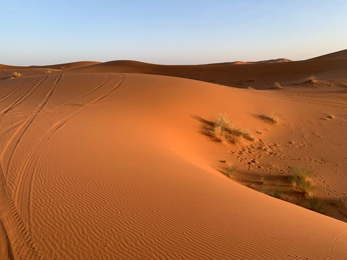 Desert Land Sand Landscape Sand Dune Sky Scenics - Nature Environment Tranquility Beauty In Nature Tranquil Scene Arid Climate Climate Nature Clear Sky Non-urban Scene Day No People Remote The Traveler - 2019 EyeEm Awards