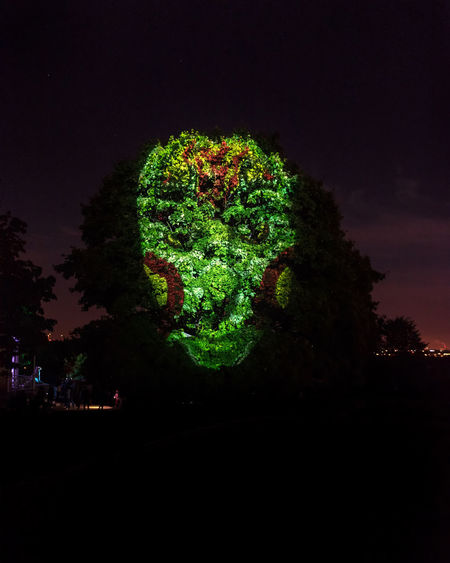 Giant face light painted on a tree during Moscow Light Festival 2018 Light Festival Light Painting Looking At Camera Copy Space Dark Face Green Color Illuminated Nature Night Outdoors Plant Tree