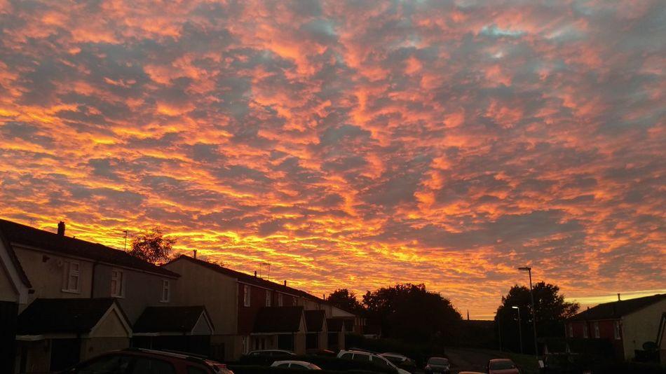 Fiery Sunset... Fiery Sky