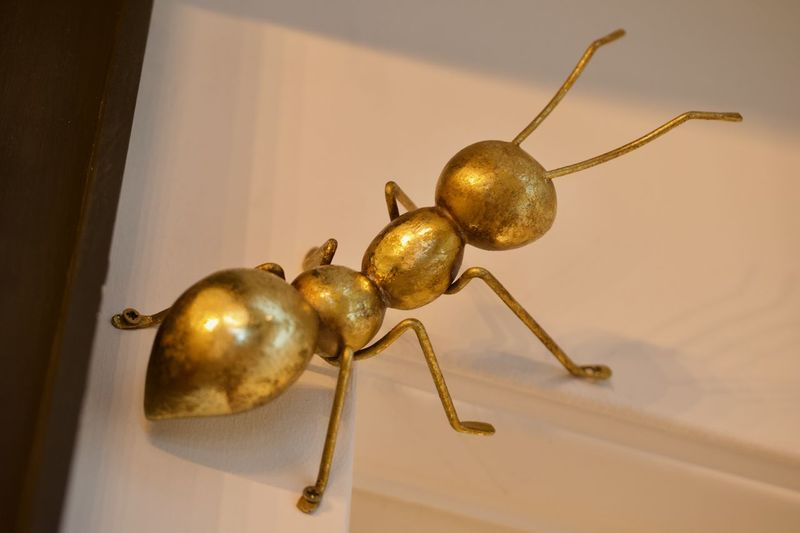 Antz Close-up Creativity Metal Animal Themes Insectos Insect Art And Craft